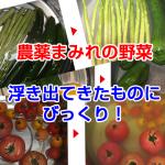 nouyaku