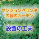 midori_curtain3